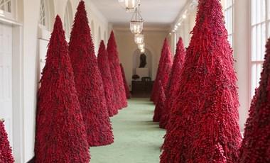 Önnek is lesz pár kérdése, ha meglátja, milyen karácsonyfák lesznek idén a Fehér Házban – fotók