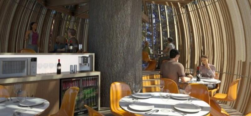 Étterem az óriásfenyőn! Megmutatjuk a látványterveket