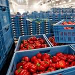 Ezermilliárd forintot kérne az élelmiszeripar, de csak 300-at kaphat