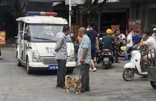 Elkezdődött a kutyahúsfesztivál Kínában – dacára a koronavírusnak és a tiltásnak
