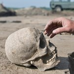 Huszonnégy emberi koponyát próbáltak Baliról Hollandiába csempészni