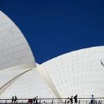 Olyan meleg van Sydney-ben, hogy a denevérek elevenen megfőttek - százával potyogtak a fákról