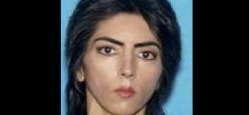 Harcban állt a YouTube-bal a cég központjában lövöldöző nő