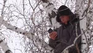 Ilyet még biztosan nem láttatok: egy fa tetején tanul a szibériai diák
