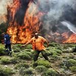 82-re emelkedett a görög tűzvész halálos áldozatainak száma