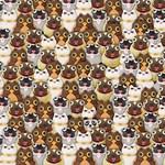 Megint a pandát keresi az internet - Ön megtalálja?