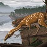Fogatlan dinoszaurusz maradványaira bukkantak