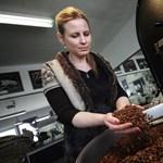 Falusi magyar pörkölőből hódít az elitkávé