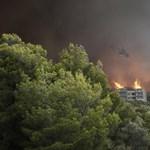 Már ötven halottja van a görögországi tűzvésznek