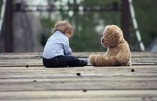 Magyar kutatók rájöttek, mi alapján döntenek a 18-36 hónapos gyerekek