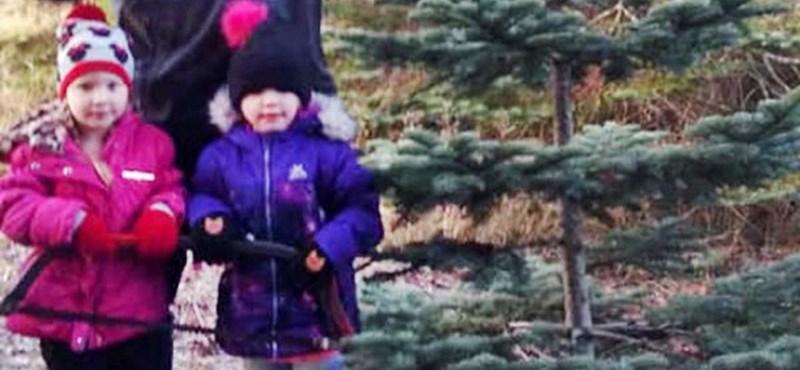 Hatvanméteres szakadékból mászott ki egy négyéves ikerpár, miután balesetet szenvedtek