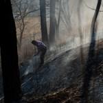 Feloldották az országos tűzgyújtási tilalmat