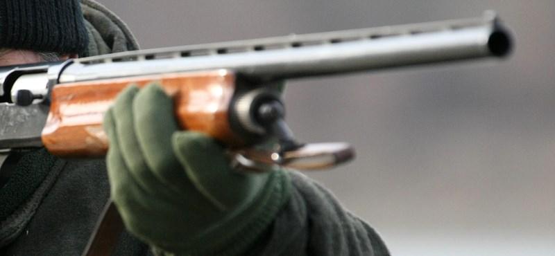 Lelőtte a kutyáját a takácsi férfi az engedély nélkül tartott sörétes puskájával