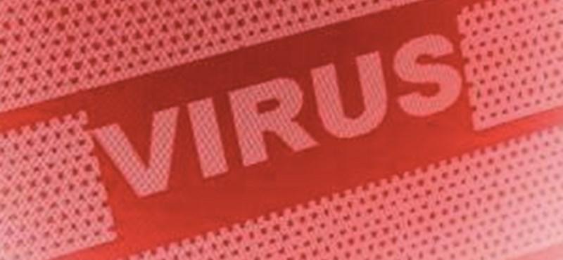 Vigyázzon a gépére: ezek a vírusok fertőznek most
