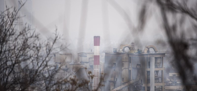 Két évvel korábban halunk a légszennyezettség miatt