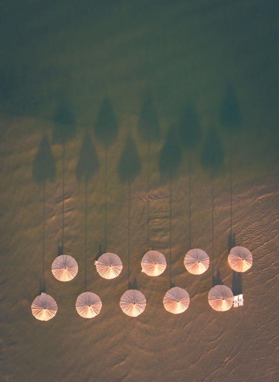 e! - drónfotópályázat Pélmaernyők a lagúnában