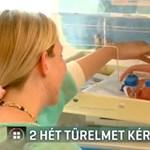 Szülési szabadsággal magyarázza a Honvédkórház koraszülöttcentrumának bezárását a miniszter