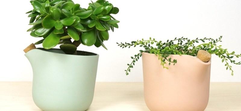 Állandóan kipusztulnak növényei? Íme, az önlocsoló cserép