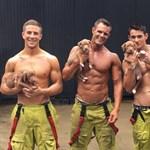 Csábítás jótékony céllal: kiskutyákkal pózoló félmeztelen tűzoltók gyűjtenek adományokat