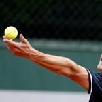Fucsovics: Csak Djokovicnak van veszítenivalója