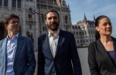 A klímaváltozás ellen harcolna az Európai Parlamentben az LMP
