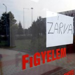 Sztrájkolnak a litvániai lengyel iskolák diákjai