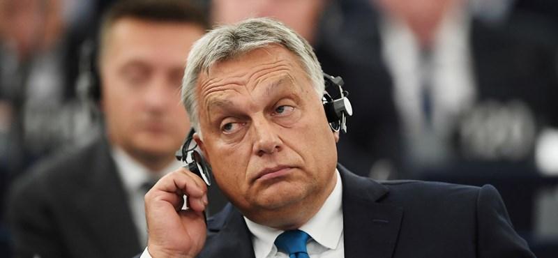 Horváth Zoltán: Pávavacsora