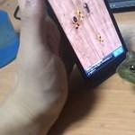 Játékos állatok 2: veszélyes lehet, ha házi kedvencünk játszik az okostelefonon! [videó]