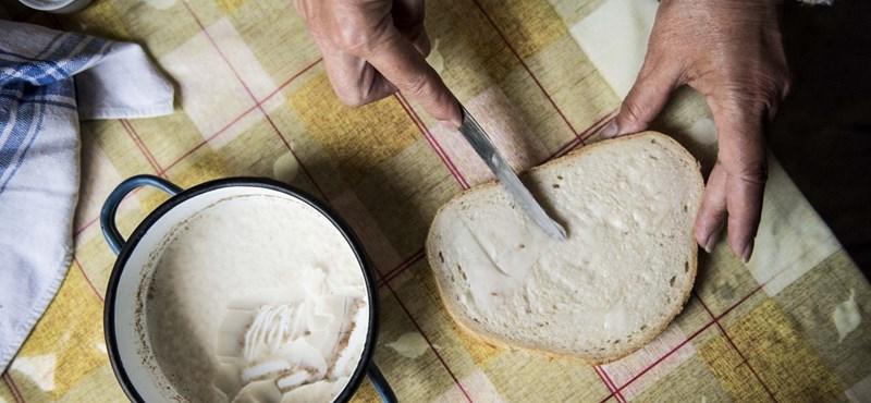Drágul a kenyér