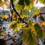 A halottakra emlékeznek a budapesti temetőkben - Nagyítás-fotógaléria