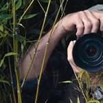 Akár önt is érintheti, hogy felvásárolták az egyik legnagyobb fényképmegosztót