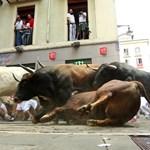 San Fermín: a bika halála