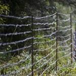 Kérés nélkül is átvenné a Frontex az EU-határok őrzését