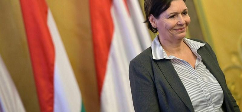 Áder testvére rádöbbent: sajnálatos módon rombolt az előző Orbán-kormány