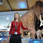 Külön előadásokkal és játszóházzal vár mindenkit a hétvégén a Természettudományi Múzeum