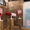 Így néz ki a világ első vaginamúzeuma