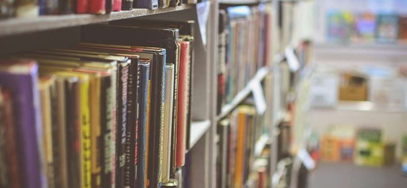 Zseniális irodalmi tesztek: felismeritek ezeket a híres verseket és regényeket?