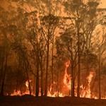 Három nagyobb tűz egyesült Ausztráliában, de ma már könnyebb lehet oltani