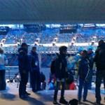 Kóbor kutya szaladt be a szocsi stadionba - fotó