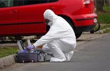 Letartóztatták a gyulai emberölés gyanúsítottját