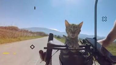 Körbe akarta biciklizni a Földet egy skót férfi egy macskával, de Magyarországon ragadt