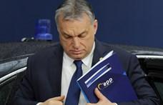 Véget ért a fideszes vizit Orbánnál, mindenki kapott bizonyítványt