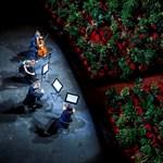 2300 cserepes növény előtt adtak operaházi koncertet Spanyolországban