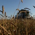 Csaknem 10 milliárd forint kell ahhoz, hogy kibogozzák a szövevényes magyar földtulajdoni viszonyokat