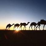 Szaúd-Arábia kiutasította Kanada rijádi nagykövetét