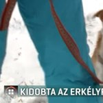 Kidobtak egy kutyát egy dunakeszi panelház első emeletéről