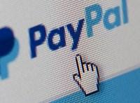 A PayPalnak elege lett a pornóoldalból