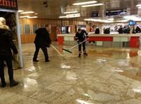 Barna trutymó öntötte el a Lehel téri metrómegállót – videó