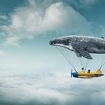 Miért repülök folyton álmomban?