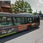 Megállóban gázolt halálra egy férfit a busz az éjjel